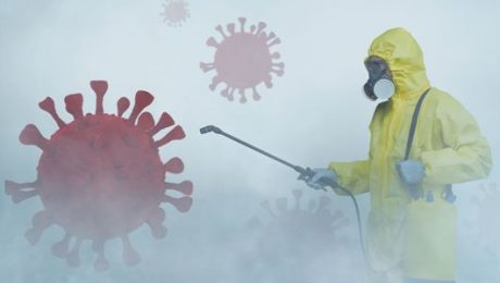 Desinfecciones Tenerife sur